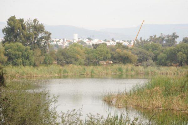 Advierten sobre daños severos a Parque Los Cárcamos