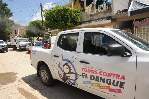Se pretende eliminar a mosquito transmisor del dengue