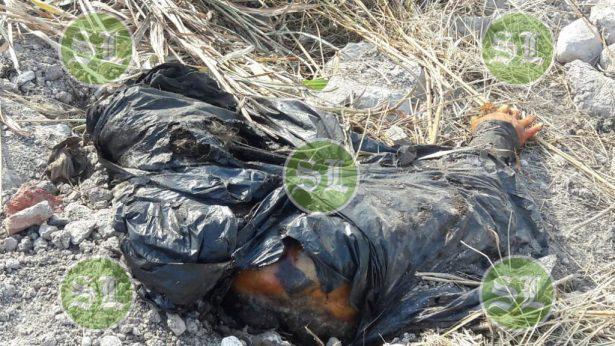 Restos encontrados en Piletas, son de una mujer