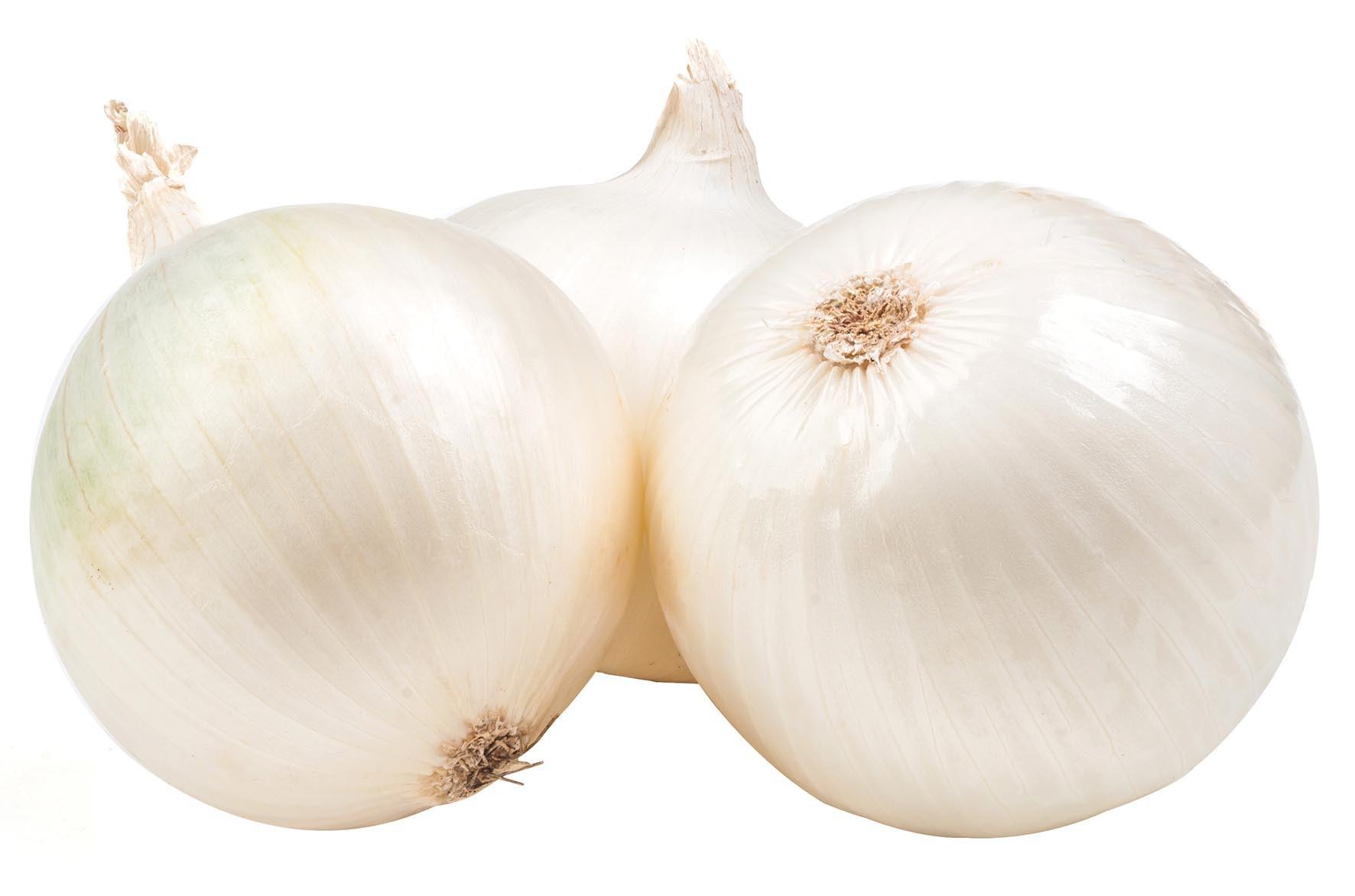 11 cebolla
