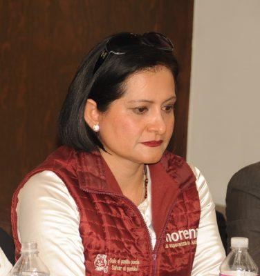 Urgen definiciones en Morena