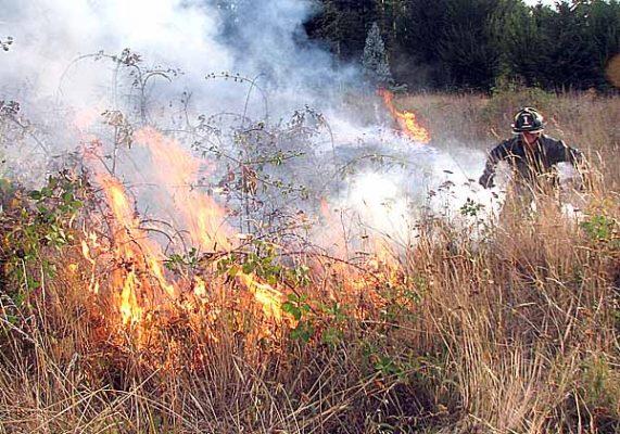Investigan incendios frecuentes en Brisas del Lago