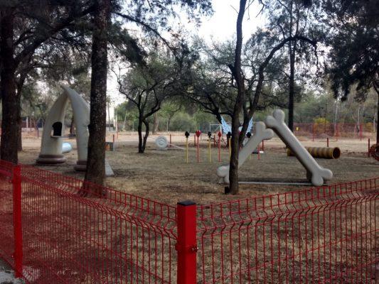 A punto de finalizar construcción del Perro parque