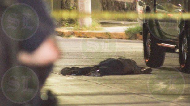 Asesinan a trailero en Loma Bonita