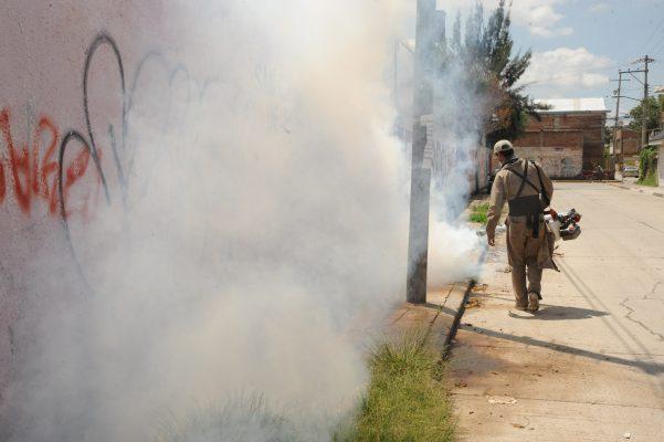 Invade al estado mosco transmisor de dengue y zika