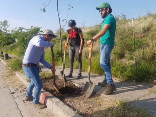 Inicia jornada de reforestación en León