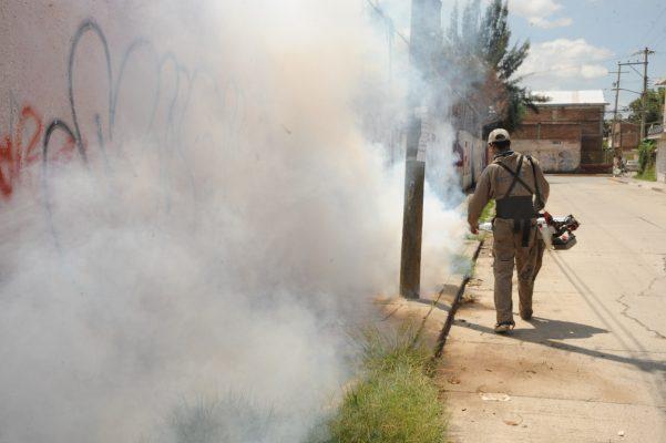 En temporada de calor y lluvia se incrementan casos de dengue y zika