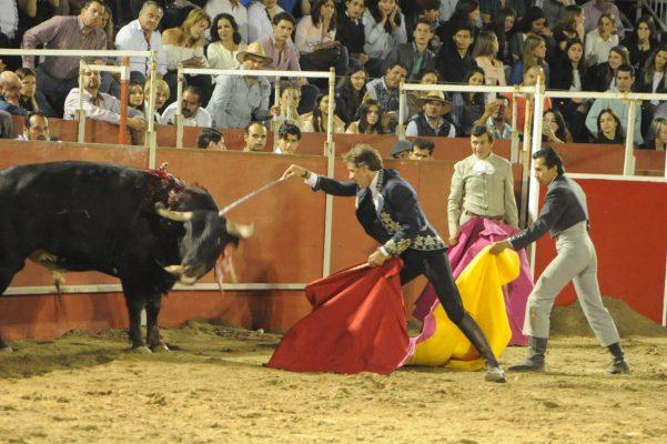 Menores ya podrán ingresar a las corridas de toros