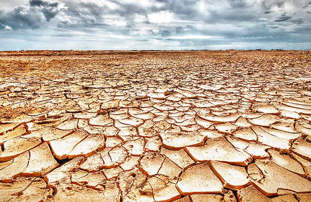 Ignoran 18 Estados los programas de cambio climático: diputados