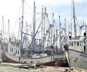 Empezarán a fluir los créditos para reparación de Barcos