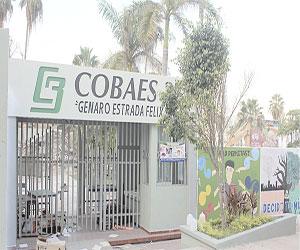 Demuelen las instalaciones del Cobaes 37