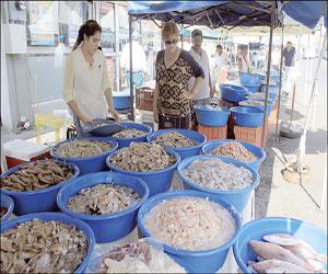 No repuntan las ventas de camarón