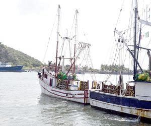 Enfrenta sector pesquero situaciones adversas: Canainpesca