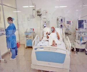 Trasplante de Hígado, Exitoso