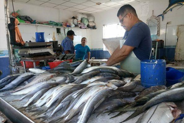 Escasea pescado, mas no compradores