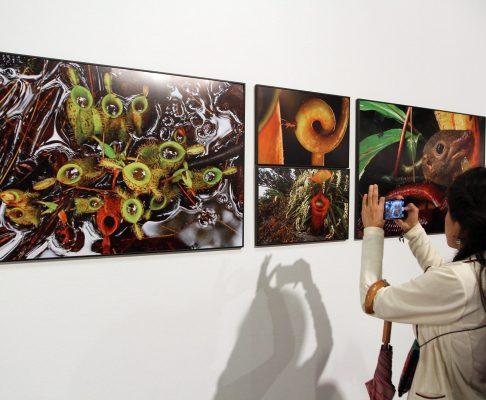 """El """"World Press Photo 15"""" llega al Museo Franz Mayer"""