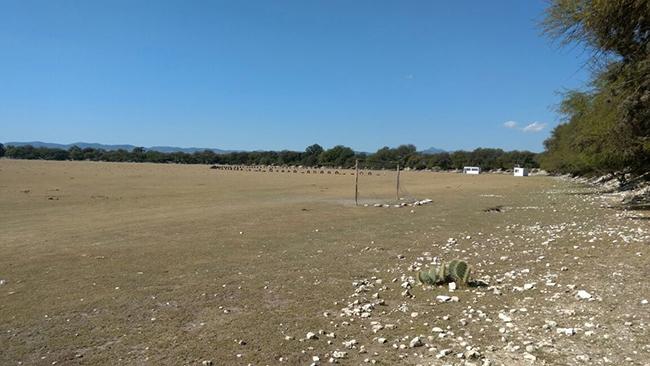 Esta será la nueva sede / Foto: El Sol de San Luis