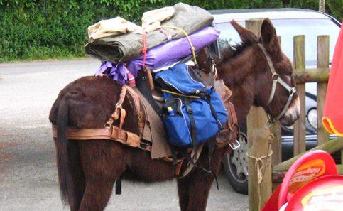 AYUDA PARA cargar las pertenencias durante el Camino.