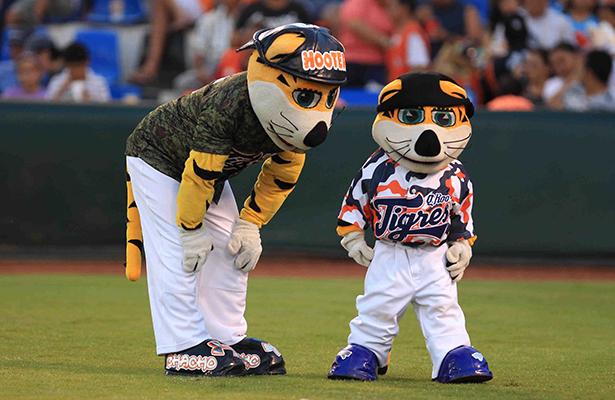 CHACHO el Tigre es otra tradición felina que se perderá.