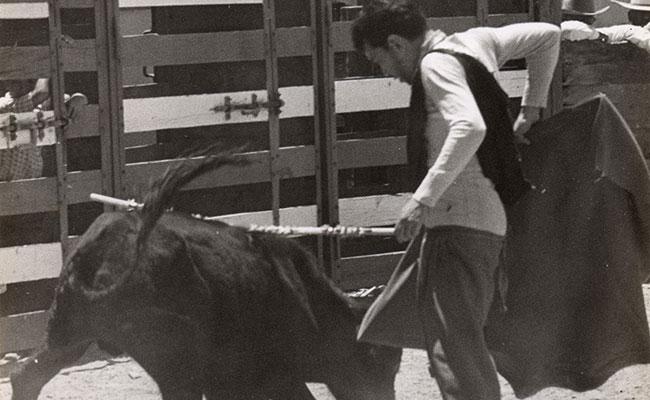 EL COMEDIANTE tenía un criadero de toros en su hacienda La Purísima