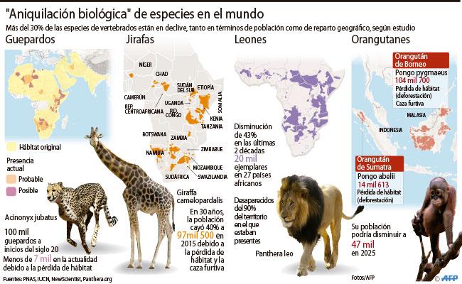 se-acelera-la-extincion-masiva-de-animales