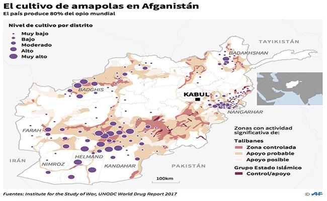 los-talibanes-controlan-produccion-de-heroina-abastecen-80-de-consumo-mundial_2