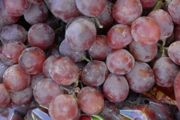 Uvas son importadas desde california para estas fechas
