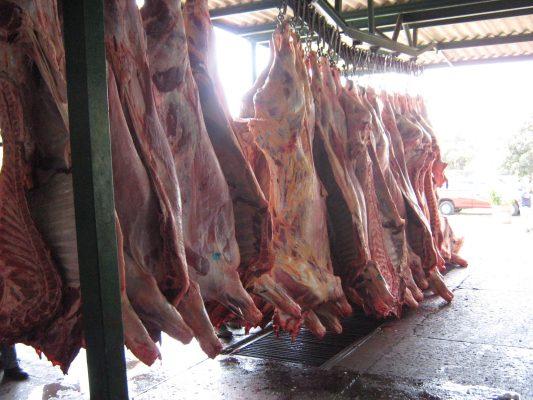 Verificación de carne en rastros, para reducir riesgos de salud pública