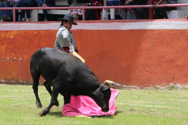 Rodrigo Breco II y Manzanito vuelven hoy al Cortijo La Salud