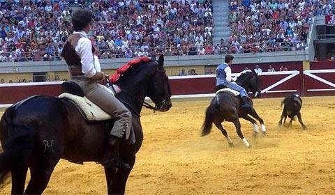 Pablo Hermoso de Mendoza y su hijo vienen a Morelia