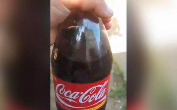 [VIDEO] Encuentran una rara criatura en el interior de una Coca Cola