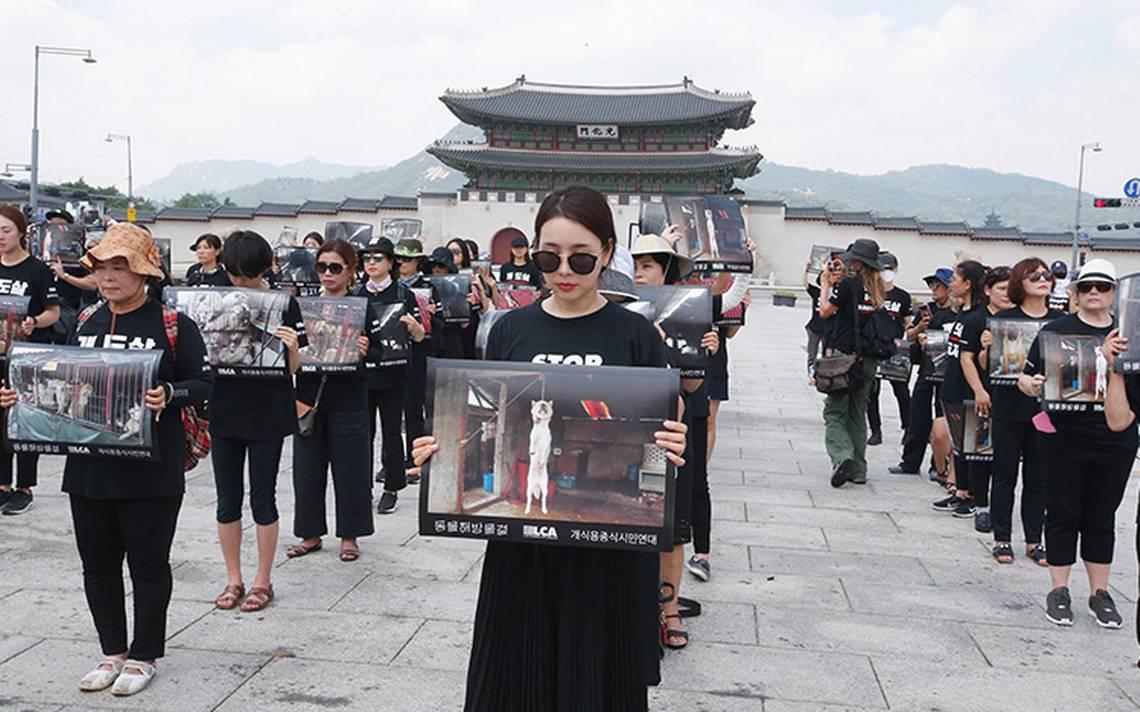 Activistas toman Seúl; exigen terminar con el consumo de carne de perro