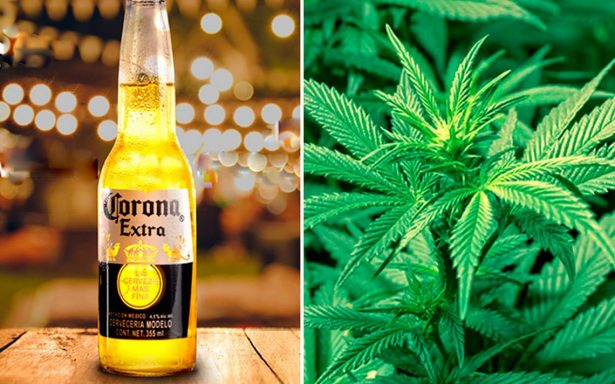¿De vender cerveza Corona a marihuana? Constellation Brands compra el 10% de Canopy Growth