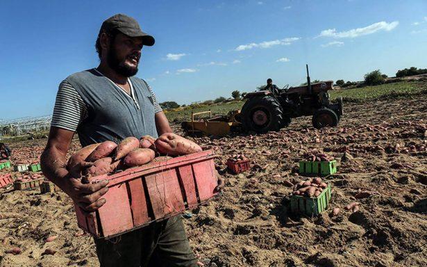 Empresarios de EU preocupados por mano de obra tras llegada de Guardia Nacional a la frontera