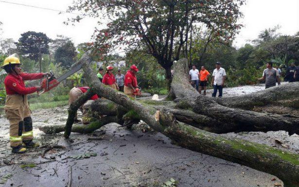 Lluvias desbordan dos ríos en Tabasco; hay alerta en seis municipios