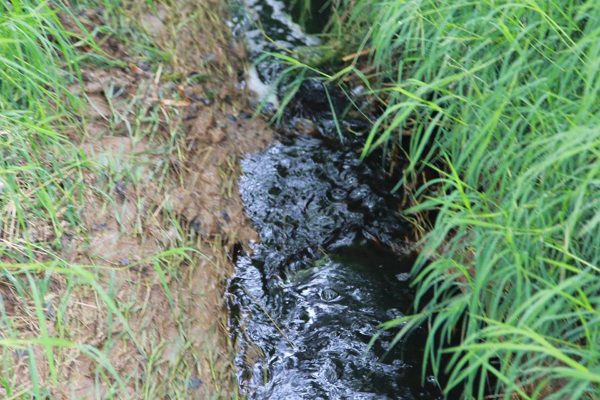 Investigan contaminación en el río Chiquito