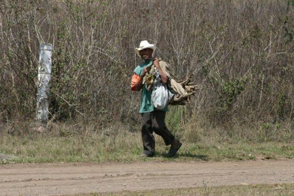 Persiste nulo desarrollo en la sierra de Zongolica