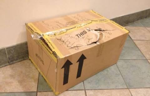Encuentran a recién nacido en una caja de cartón en la calle.