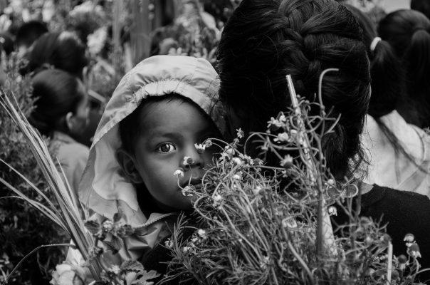 Gana zongoliqueño concurso de fotografía
