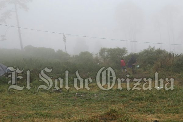 Afectados cientos de habitantes por heladas en Mariano Escobedo