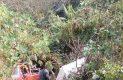 Cae camioneta a barranco de 25 metros; el chofer resultó herido