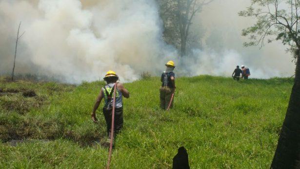 Maltrata concentra mayoría de incendios forestales en el estado