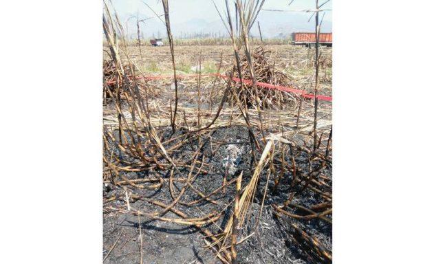 Hallan restos humanos tras quema de cañal