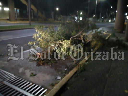 Surada deja daños en diferentes puntos de la ciudad