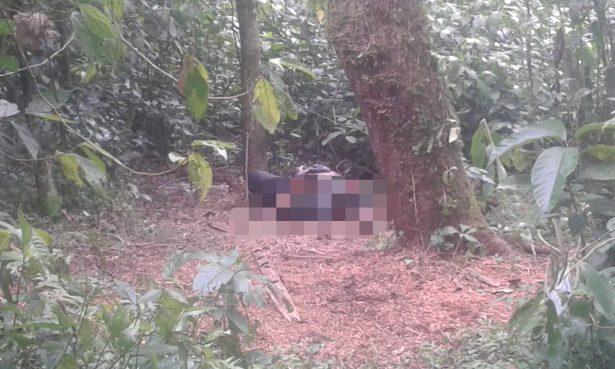 Encuentran a taxista ejecutado en un plantío de café