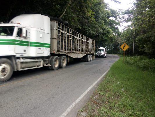 Roban camionetas con productos enlatados; no localizan a los conductores