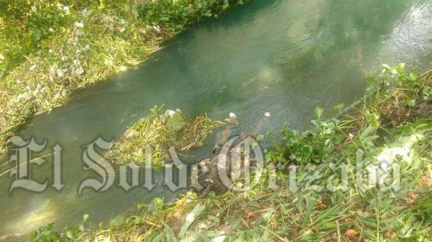 Hallan muerto en el río Matzinga