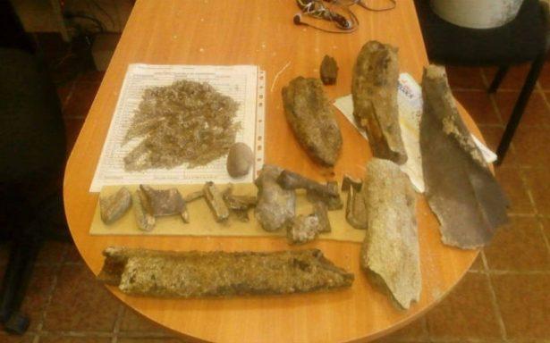 Localizan restos de mamut en la rivera del Río Lerma