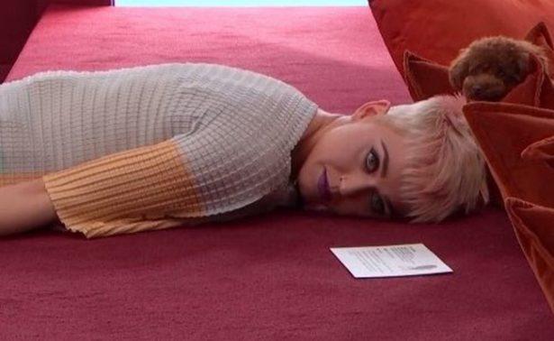 """¡Katy Perry abre su corazón y su casa en """"reality show""""!"""