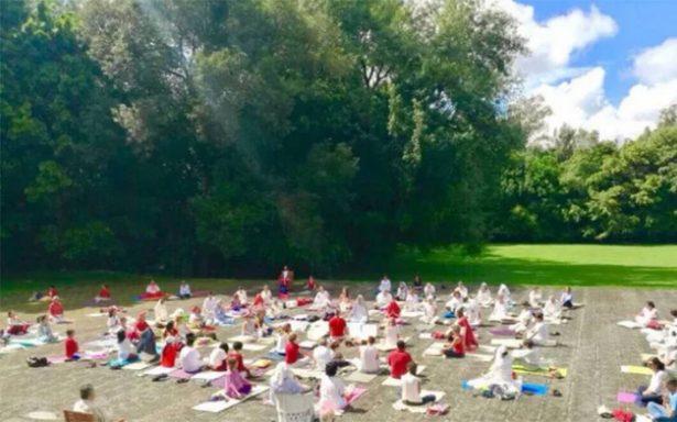 Medita y ayuda este fin de semana en la CDMX